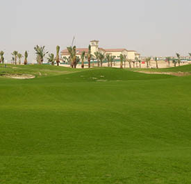 Royal Greens golf Club- KAEC