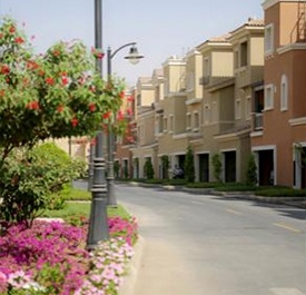 Alwaha district street view -  KAEC